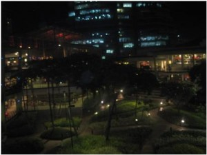 Ayala Terraces, beside you can find the Red box