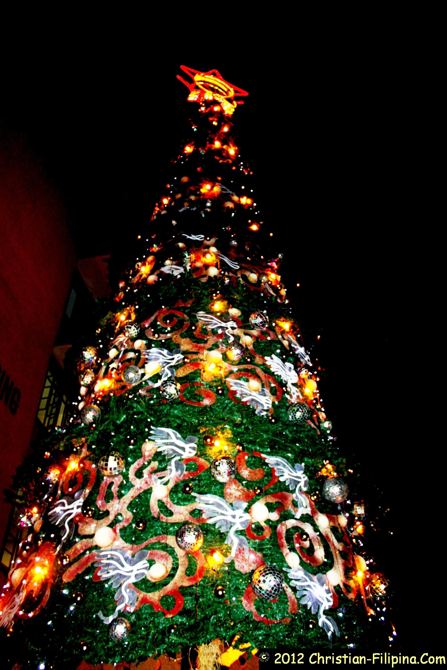 Photo of a 60-feet Christmas tree in Baguio, Philippines
